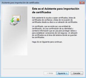 asistente importar certificado IE