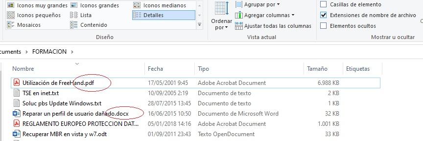 extension archivos